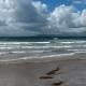 Une plage en Irlande - Un draezhenn e Bro Iwerzhon
